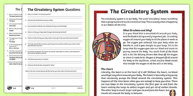 Amazing circulatory system reading comprehension pdf photo ideas pin on gy