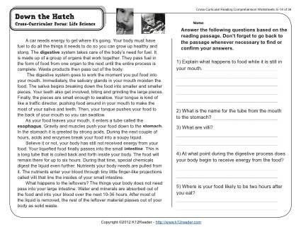 Extraordinary digestive system reading comprehension image inspirations down the hatch worksheets spellingrammar lesson plans