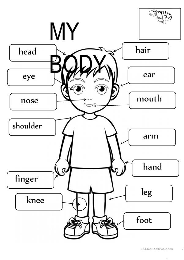Fill in the blanks worksheets for kindergarten body parts activities with music songs nursery rhymes classro 96659 2 phenomenal