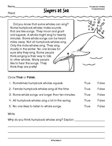 Free reading comprehension worksheets for 2nd grade photo ideas what is