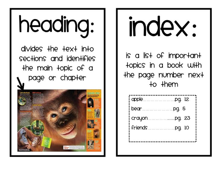 Text features worksheet 2nd grade picture ideas buggy for second feature freebie first reading informational